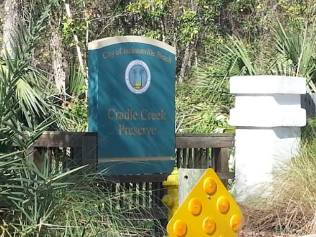 Cradle Creek Preserve Jacksonville Beach FL