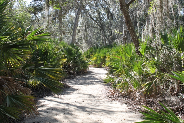 Trails at Cradle Creek Preserve